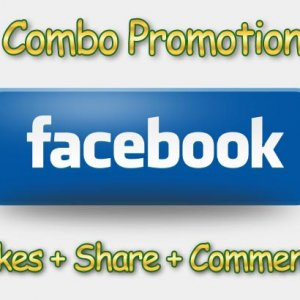 You can buy facebook promotion package simply and profitable to your advertizing budget.  After confirmation of your payment we every few minutes chec