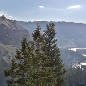 Yellowstone Viewpoint